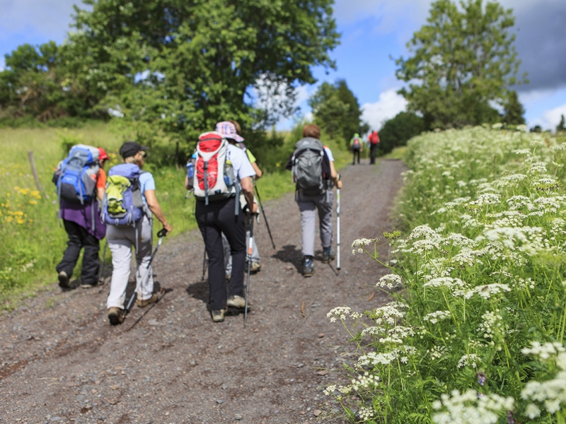 Our guided groups walks on Scotland's Trails